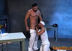 Buff sailor bear sperms