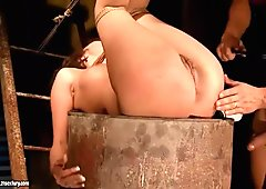 Gorgeous girl gets bondaged and fucked anally