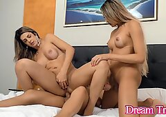 Sizzling Anal Action with 3 Trans Babes