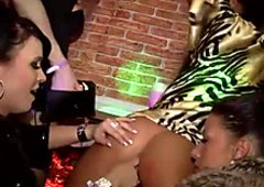 Hussy lesbians  lick each others slits at the drunk party