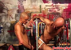 Caged euro sub assfucked by skinhead